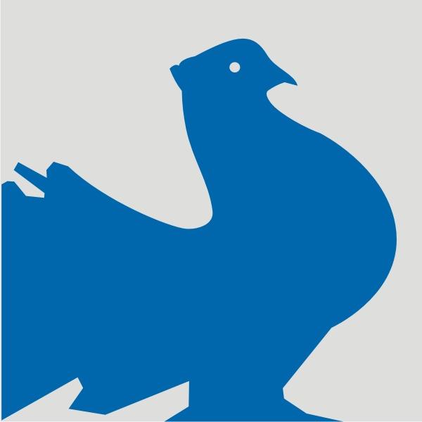 Okręgowa Wystawa Gołębi Pocztowych, Świętokrzyska Wystawa Gołębi Rasowych i Drobiu Ozdobnego, Świętokrzyska Wystawa Królików oraz Targi Akcesoriów Dla Gołębi, Kielce 6-7 grudnia 2014
