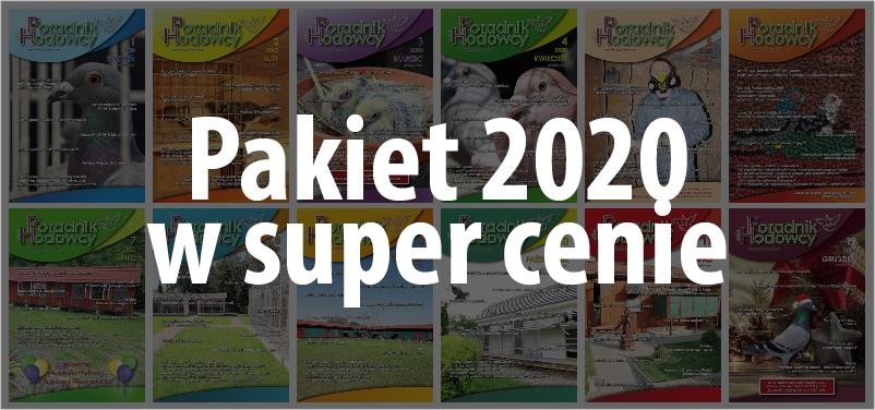 Pakiet 2020 w super cenie!